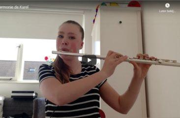 Harmonie De Karel Speelt Het Wilhelmus